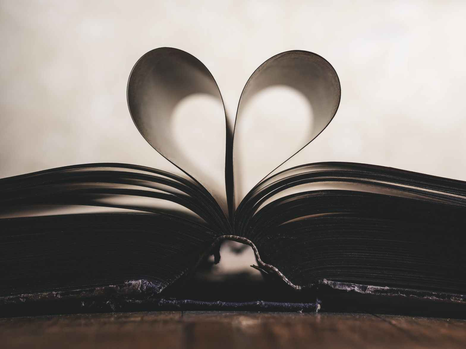 true love - an open book with pages made into a heart